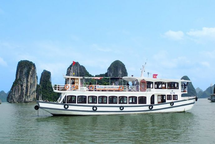 alova cruise day trip halong bay